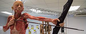 Museum of Human Body in Bangkok