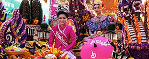 Chiang Mai Flower Festival 2014